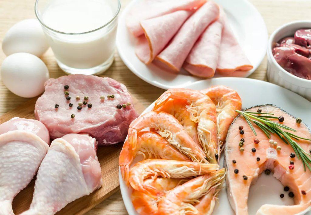 Почему белковая диета полезна