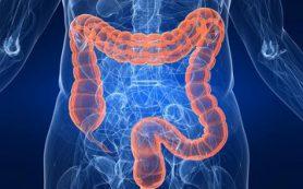 Кишечник будут исследовать паразитическими червями