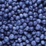 Черника полезна для здоровья кишечника