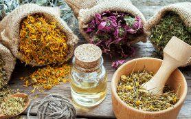 5 лекарственных трав, которые помогут при любом виде гастрита