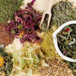 Травяные средства при панкреатите