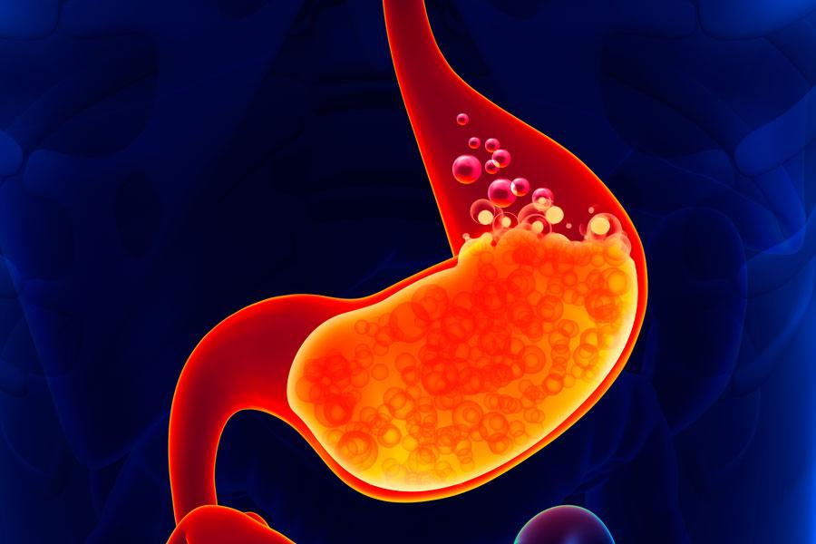 3 травяных сбора для снятия воспаления и понижения кислотности желудка