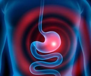 5 растений, усиливающих секрецию желудочного сока