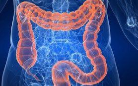 Три недорогих натуральных средства для улучшения работы кишечника