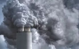 Загрязнения воздуха приводят к аппендициту