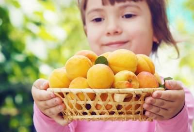 Назван самый полезный фрукт для здоровья кишечника