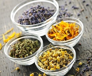 5 рецептов из лекарственных трав при желтухе и гепатите