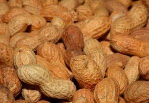 Аллергию на арахис можно лечить — исследование