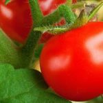 10 продуктов, которые вызовут у вас изжогу летом