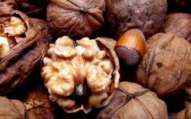 Грецкие орехи помогают от дисбактериоза