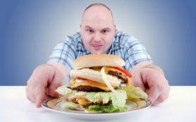 Питание жирной пищей столь же вредно, как и вирусная инфекция