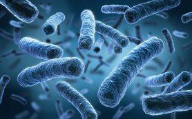 Рассеянный склероз может вызываться микрофлорой кишечника, заявляют ученые