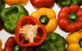 Какими целебными свойствами обладает болгарский перец