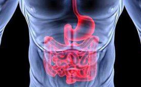Пробиотики не эффективны в лечении недугов желудочно-кишечного тракта