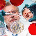 Травмы влияют на бактерий кишечника