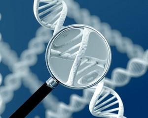 Удалось обнаружить генетические дефекты, приводящие к редкому недугу ЖКТ