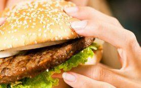 Вредная пища меняет кишечную микрофлору