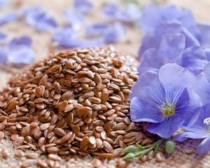 Семена льна как средство профилактики гастроэнтерологических заболеваний