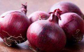 Красный лук против рака кишечника