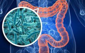 Кишечная микрофлора, как причина депрессии