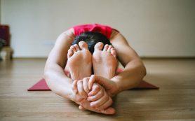 Упражнения меняют состав микробиома кишечника