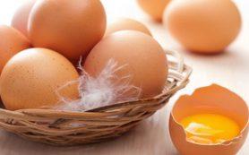 Куриные яйца помогают сбросить вес