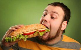 Переедание замедляет метаболизм