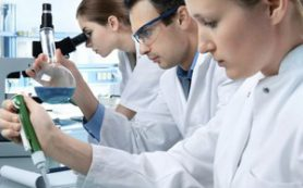 Биологи вырастили в пробирке искусственный мини-желудок