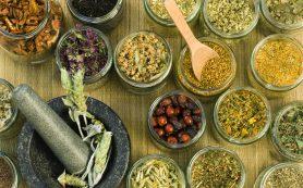 Лечебные травы для здоровья кишечника