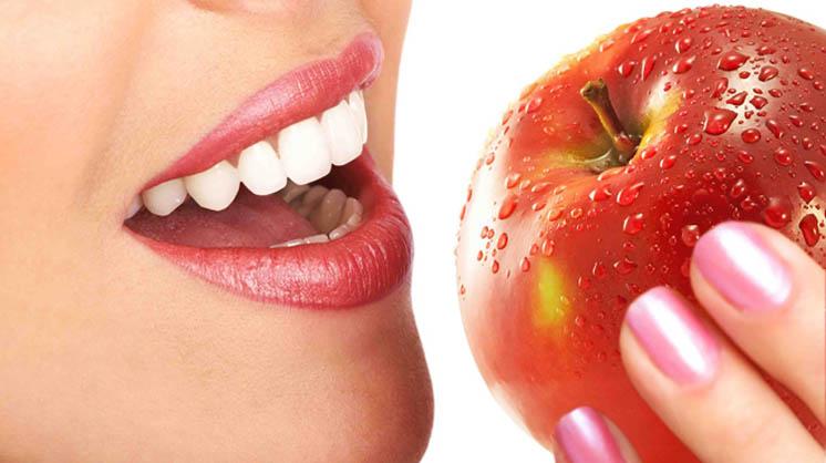 Регенерация зубов у людей может стать реальностью