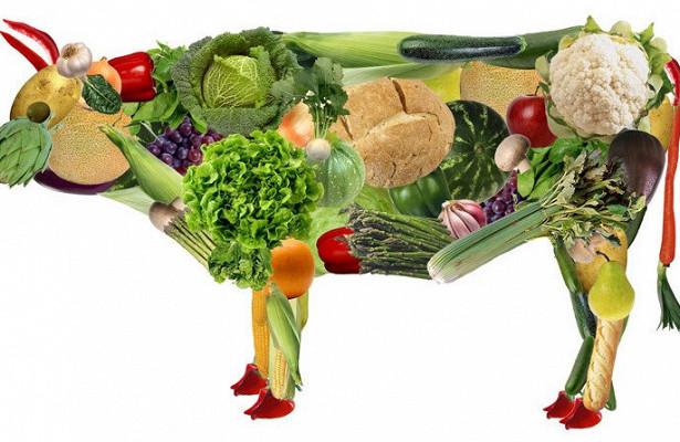 Вегетарианство улучшает здоровье?