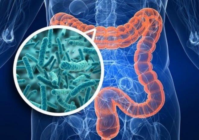 Взаимосвязь патологий ЖКТ и туберкулеза