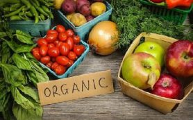 Медики подсказали лучшие продукты для очищения кишечника