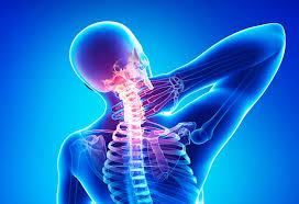 Остеохондроз — болезнь XXI века. Симптомы, причины, виды, лечение, профилактика