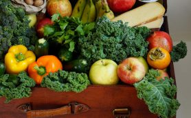 Возникновение ожирения связали с домашней пылью