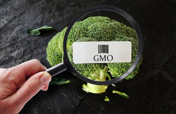 ГМО: три печальных буквы или выбор человечества?