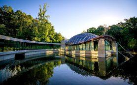 Самые впечатляющие примеры того, как природа вдохновляет архитекторов на проектирование новых зданий