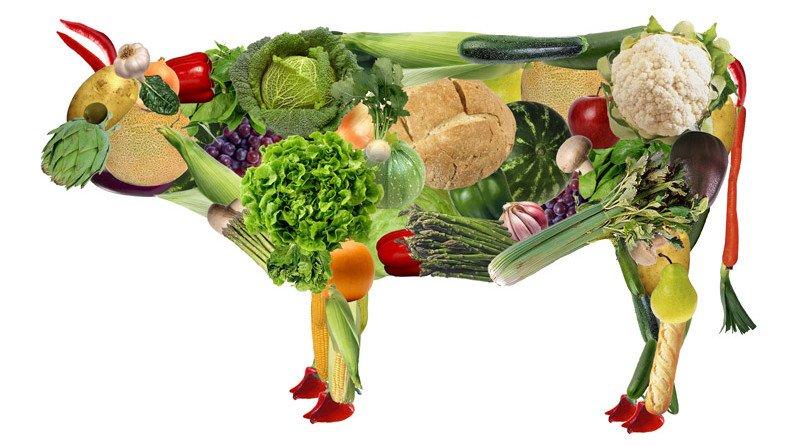 Правда ли, что вегетарианство улучшает здоровье?