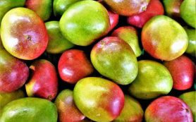 Назван фрукт, избавляющий от проблем с пищеварением