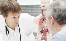 Названы лучшие средства для профилактики заболеваний почек