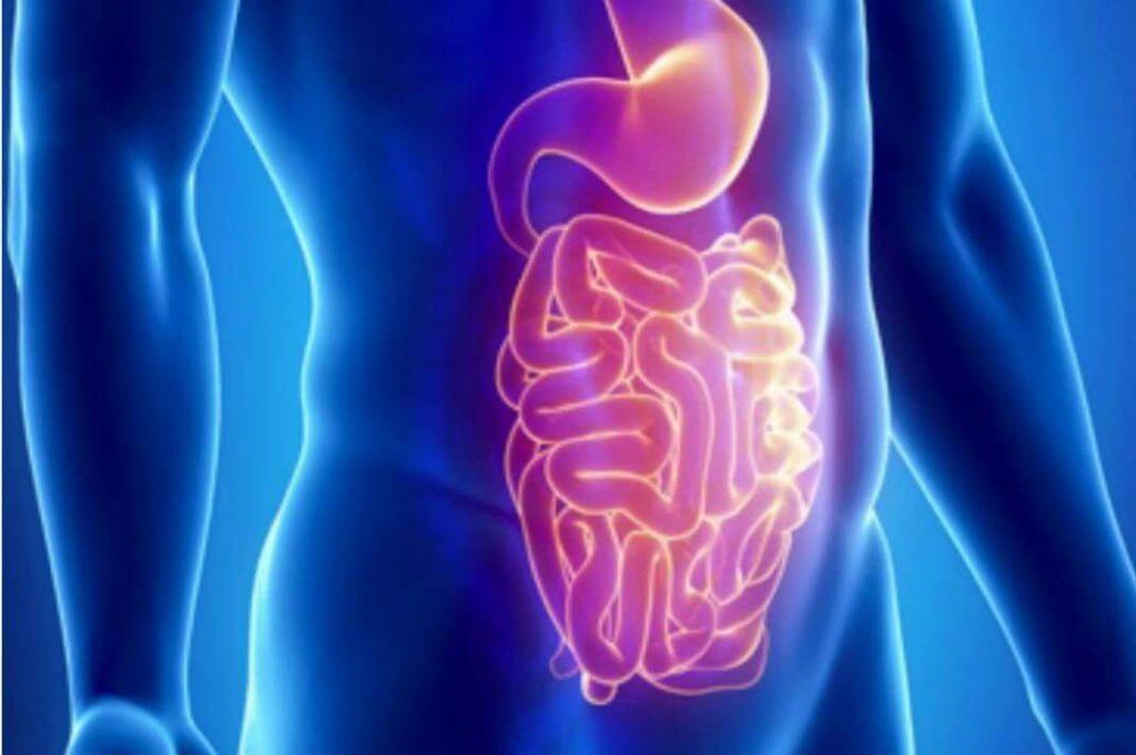 Медики перечислили самые вредные продукты для кишечника