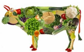 Названы опасные последствия вегетарианства