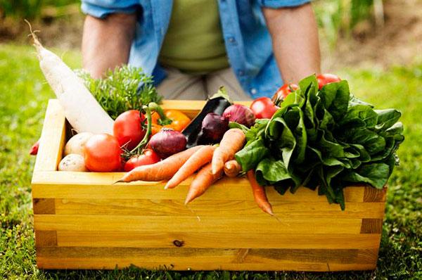 5 веществ, которые жизненно необходимы нашему организму