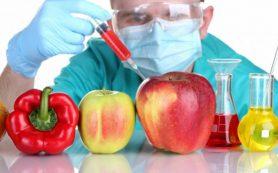 Вся правда о ГМО: развенчаем самые популярные мифы