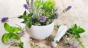 Гипотиреоз — 5 лечебных травяных настоев