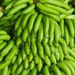 Кому полезны зеленые бананы