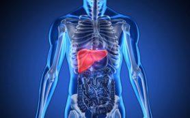 Уникальные молекулы могут спасти от жировой болезни печени
