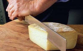 8 полезных свойств сыра