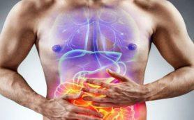 5 советов для укрепления пищеварительной системы