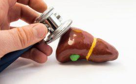 Этот доступный продукт помогает защитить печень от алкогольного повреждения